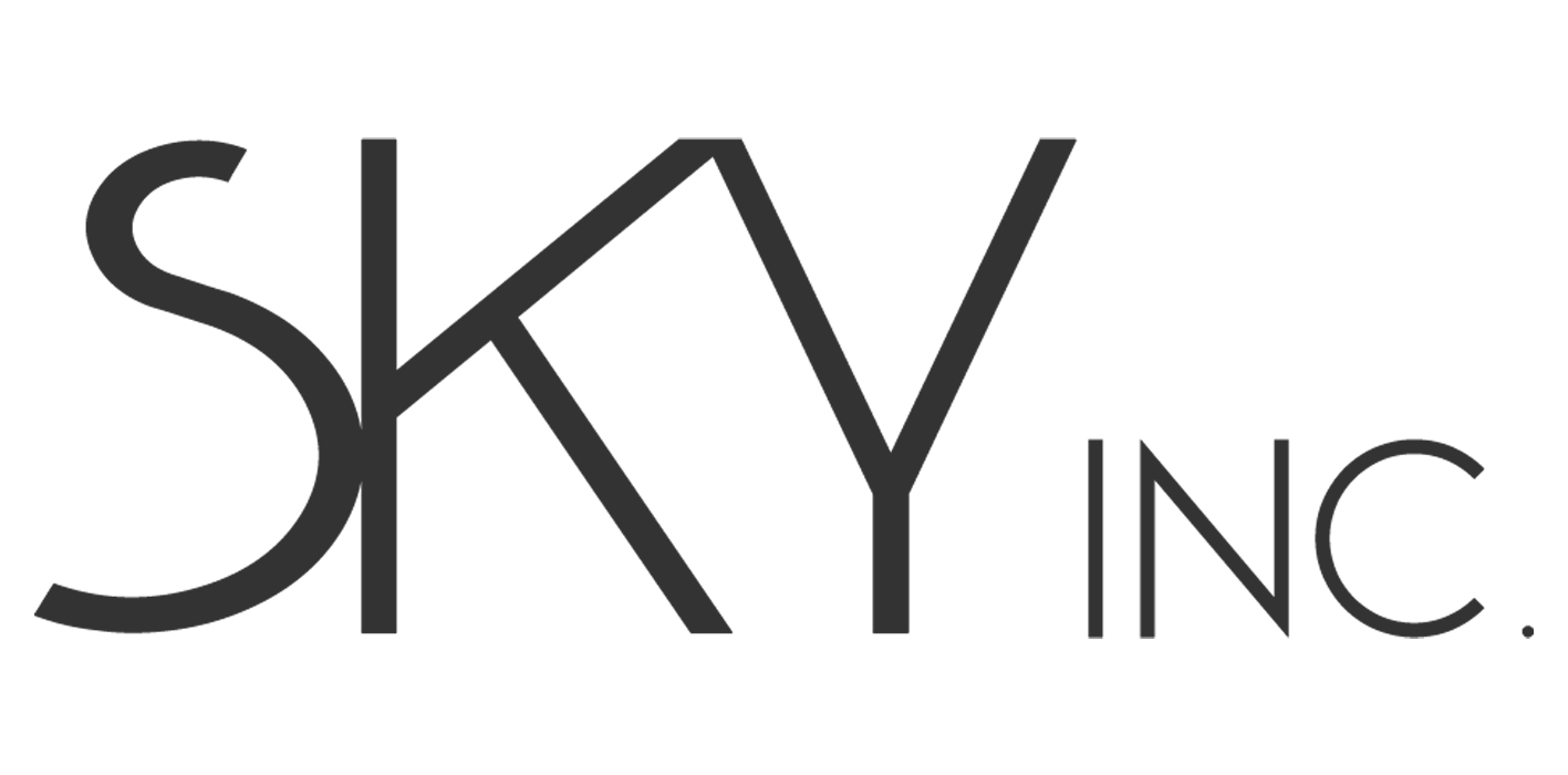 新宿大久保【株式会社SKY(スカイ)】 男女美容事業・HP制作・コンサルティング